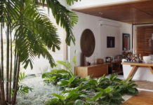 Decorar a casa com plantas