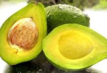 Como conservar o abacate
