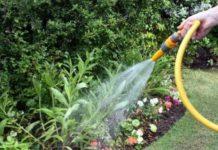 Regas ecológicas para regar o jardim