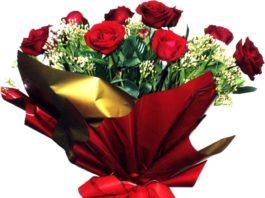 Flores: como mantê-las bonitas