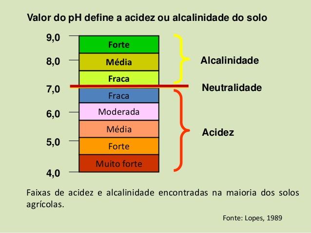 Solo ácido e solo alcalino, saiba como alterar o Ph