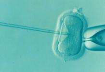 Investigação com embriões humanos
