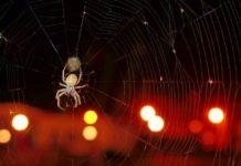 O que são fobias?