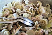 Saiba como cozinhar os frutos do mar