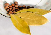 Especiaria pimenta da jamaica