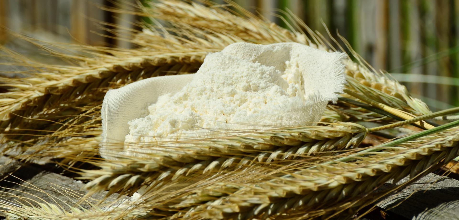 Conheça os tipos de farinha mais comuns