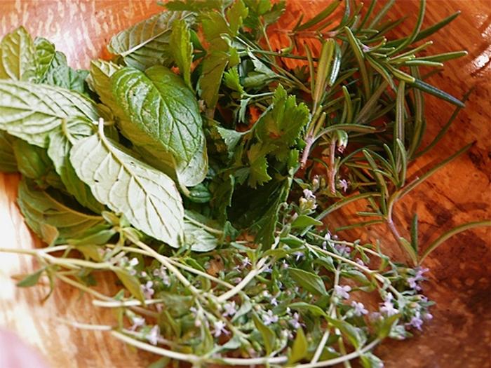 Conheça o sabor das ervas aromáticas