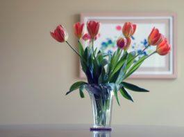 Vista a sua casa de flores