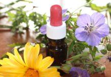 Saiba o que é a Aromaterapia, uma terapia verdadeiramente natural