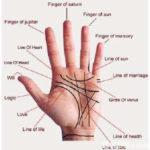 Quirologia: a vida na palma da mão