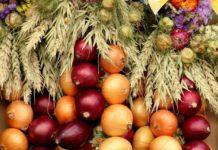 Conheça os tipos de cebola e as suas propriedades