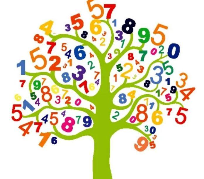 A numerologia traça o seu destino