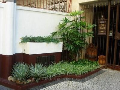 Como manter as plantas no canteiro saudáveis
