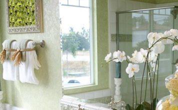 Feng Shui das plantas e flores para harmonizar a sua casa