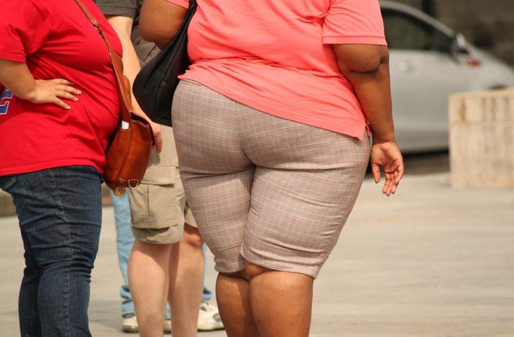 A gordura corporal é Importante para a saúde?
