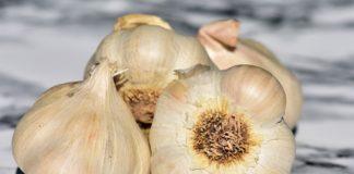 11 truques caseiros para retirar os maus cheiros