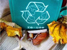 Respeitar a natureza, basta reciclar