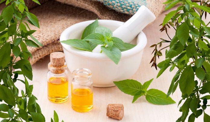 Métodos de extração dos óleos essenciais