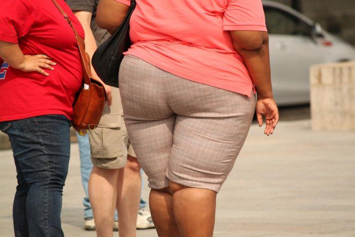 Causas da obesidade