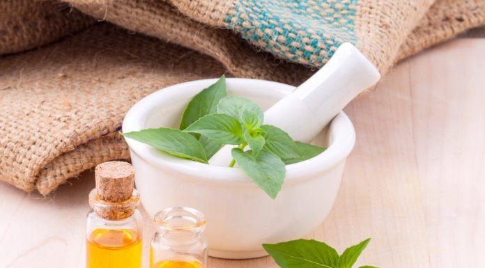 Os poderes das plantas medicinais
