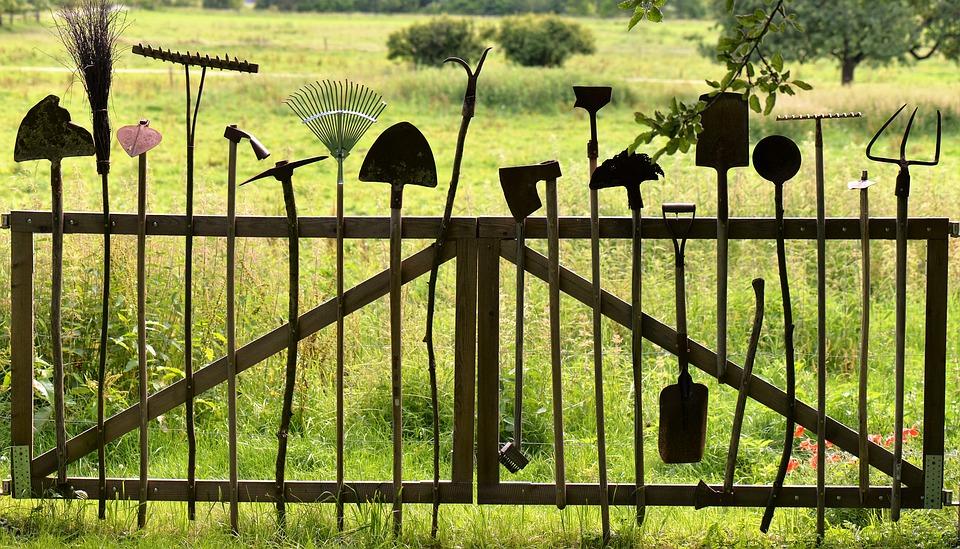 Dicionário de jardinagem
