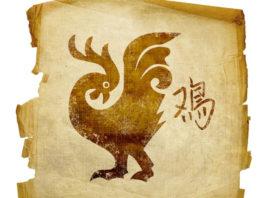 Horóscopo chinês - Signo Galo