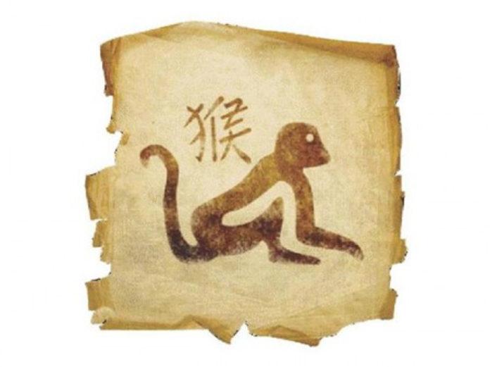 Horóscopo Chinês - Signo Macaco