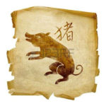 Horóscopo Chinês - Signo Porco ou Javali