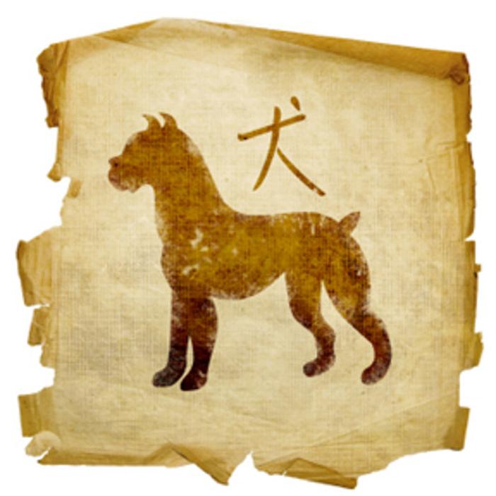 Horóscopo Chinês - signo de Cão