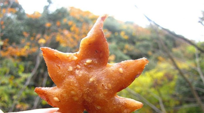 Snack Japonês de folhas de ácer