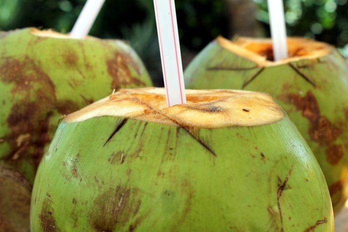 Sumo de mamão e água de coco