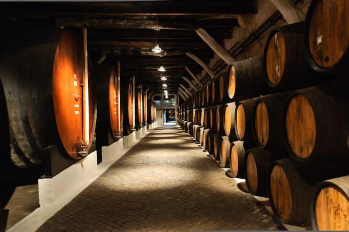 Caves do Vinho do Porto - Portoalities