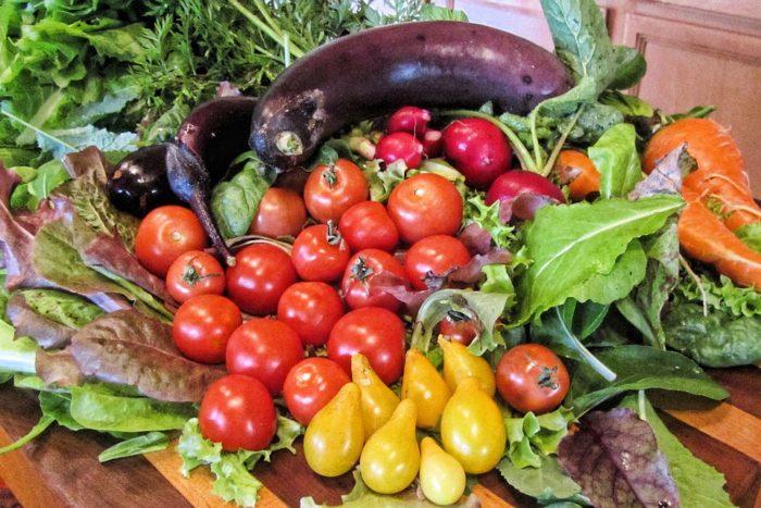 Padrão alimentar na dieta mediterrânica