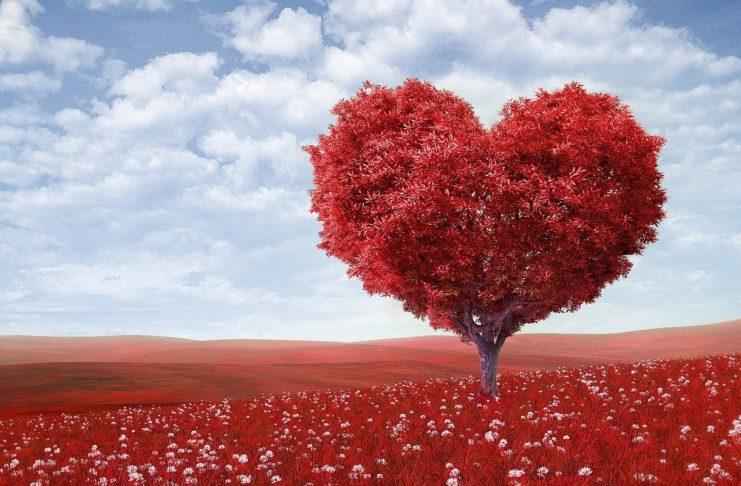 Declarações de Amor que ficaram na história